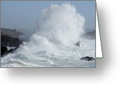 Point State Park Greeting Cards - Wave At Salt Point Greeting Card by Bob Christopher