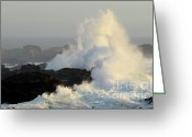 Thelightscene Greeting Cards - Waves At Salt Point Greeting Card by Bob Christopher