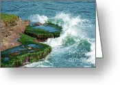 Crashing Waves Greeting Cards - Waves of La Jolla Greeting Card by Sandra Bronstein