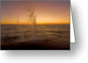 Lake Michgan Greeting Cards - Waves splash at dawn Greeting Card by Sven Brogren