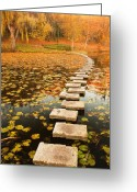 Bulgaria Greeting Cards - Way in the Lake Greeting Card by Evgeni Dinev