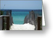 Beach Scenes Greeting Cards - Way to the beach Greeting Card by Susanne Van Hulst