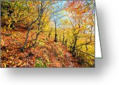 Evgeni Dinev Greeting Cards - Way to the Chapel Greeting Card by Evgeni Dinev