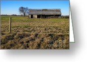 Prairie Landscape Greeting Cards - Weathered and Worn Greeting Card by Ann Powell