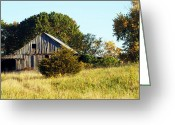 "\\\\\\\""boone County Photo Greeting Cards - Weathered Barn in Fall Greeting Card by Cricket Hackmann"