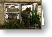 Shed Digital Art Greeting Cards - Weathered in Weeds Greeting Card by RC DeWinter