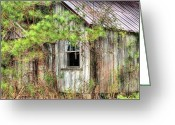 Dilapidated Greeting Cards - Weathered Greeting Card by JC Findley