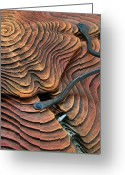 Opal Sculpture Greeting Cards - Weathered Relic Greeting Card by Jacques Vesery