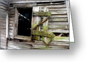 Cabin Window Greeting Cards - Weathered Wood Window Greeting Card by Carla Parris
