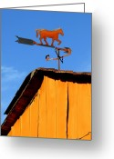 Fyn Greeting Cards - Weathervane Greeting Card by Robert Lacy