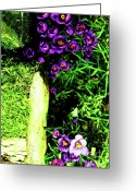Impassioned Greeting Cards - Weeds Greeting Card by Dean Edwards