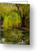 March Greeting Cards - Weeping Pond Greeting Card by Fred Lassmann