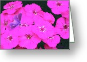 Pink Flower Prints Mixed Media Greeting Cards - Welcome To The Neighborhood Greeting Card by Elorian Landers