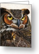 Owl Drawings Greeting Cards - Well...  Greeting Card by Pat Erickson