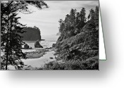 Olympic National Park Greeting Cards - West Coast Greeting Card by Sbk_20d Pictures