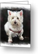 West Highland White Terrier Greeting Cards - West Highland White Terrier Greeting Card by Michael Greenaway