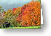 Reds Greeting Cards - West Virginia Maples 2 Greeting Card by Steve Harrington