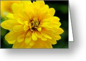 Wv Greeting Cards - West Virginia Marigold Greeting Card by Melissa Petrey