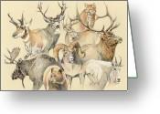 Elk Greeting Cards - Western heritage Greeting Card by Steve Spencer