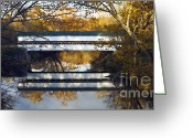 Indiana Autumn Greeting Cards - Westport Covered Bridge - D007831a Greeting Card by Daniel Dempster