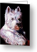 Abstract Realism Painting Greeting Cards - Westy Greeting Card by Bob Coonts