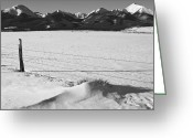 Fault Block Greeting Cards - Wet Mountain Valley Winter Black and White Greeting Card by Paul Gana