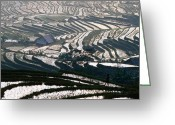 Lao Greeting Cards - Wet Rice Is Grown In Terraced Mountain Valleys Of Northern Vietnam, Sapa, Lao Cai, Vietnam, South-east Asia Greeting Card by Stu Smucker