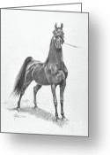 Horse Drawings Greeting Cards - WGC Night Prowler Greeting Card by Jeanne Newton Schoborg