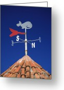 Weathercock Greeting Cards - Whale weather vane Greeting Card by Gaspar Avila