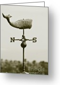 Sepia Toned Greeting Cards - Whale Weathervane In Sepia Greeting Card by Ben and Raisa Gertsberg