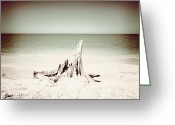Ocean Pyrography Greeting Cards - What Remains-Sepia Play Greeting Card by Chris Andruskiewicz