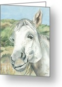 Equine Watercolor Portrait Greeting Cards - What was the Question Greeting Card by Kimberly Lavelle