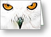 Bird Of Prey Mixed Media Greeting Cards - What you looking at Greeting Card by The DigArtisT