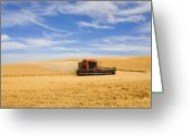 Washington Greeting Cards - Wheat Harvest Greeting Card by Mike  Dawson
