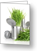 Recycling Photo Greeting Cards - Wheatgrass in aluminium cans on white Greeting Card by Sandra Cunningham