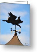 Weather Vane Greeting Cards - When Pigs Fly Greeting Card by Bill Cannon