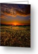 Natural Light Greeting Cards - When Time Stood Still Greeting Card by Phil Koch