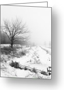 Tree Lines Greeting Cards - When Winter Comes Greeting Card by Cathy  Beharriell