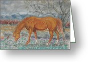 Quarter Horse Greeting Cards - When You and I Were Young Greeting Card by Dawn Senior-Trask