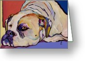 Pet Picture Greeting Cards - Where Is My Dinner Greeting Card by Pat Saunders-White