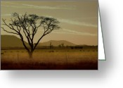 Landscapes Photo Greeting Cards - Wherever I May Roam Greeting Card by Holly Kempe