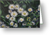 Aster  Painting Greeting Cards - Whie Asters Greeting Card by Usha Shantharam