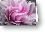 Floral Greeting Cards - Whimsy Girl Greeting Card by Jean OKeeffe
