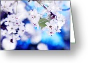 Bradford Greeting Cards - Whispers Greeting Card by Toni Hopper