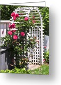 Residential Photo Greeting Cards - White arbor in a garden Greeting Card by Elena Elisseeva
