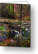 The Swamp Greeting Cards - White Azaleas in the Swamp Greeting Card by Susanne Van Hulst