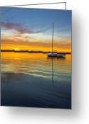 Portrait Poster Greeting Cards - White Boat Greeting Card by Debra and Dave Vanderlaan