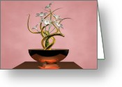 Fine_art Greeting Cards - White Flower Greeting Card by Louis Ferreira