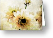 Romantic Mixed Media Greeting Cards - White Flowers Greeting Card by Linda Woods