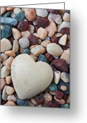 Veins Greeting Cards - White Heart Stone Greeting Card by Garry Gay